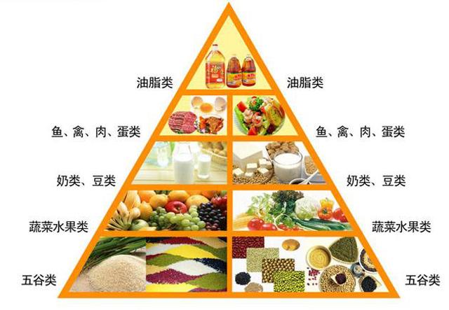 人体需求的营养主要来自食物